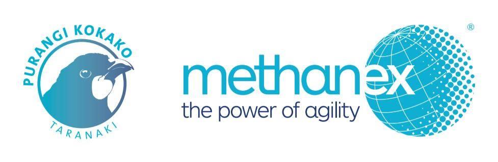 Methanex Kokako logo